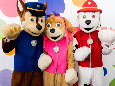Show Paw Patrol Happy Party
